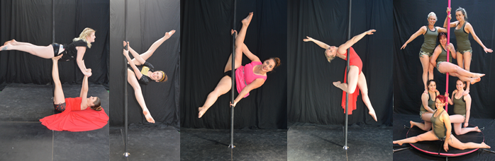 website pic pole